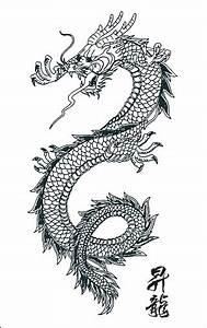 Redpig Studio Tattoo: popular japanese dragon tattoo ...
