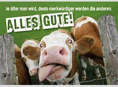 Doppelkarte Geburtstagskarte Glückwunschkarte witzige Kuh