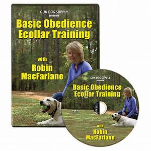 basic obedience ecollar training dvd by robin macfarlane With dog training dvd