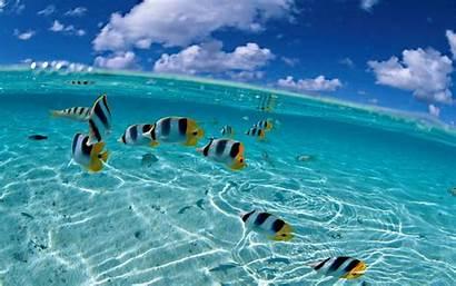 Ocean Inside Wallpapers Cool Backgrounds Sea Desktop
