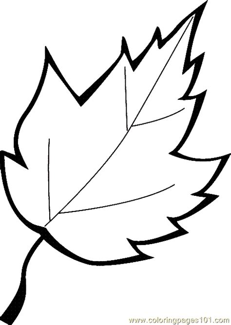 leaf coloring page  printable coloring page  kids