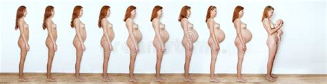 collage pregnant woman beginning    months