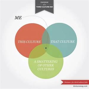 Diagram Of A Third Culture Kid