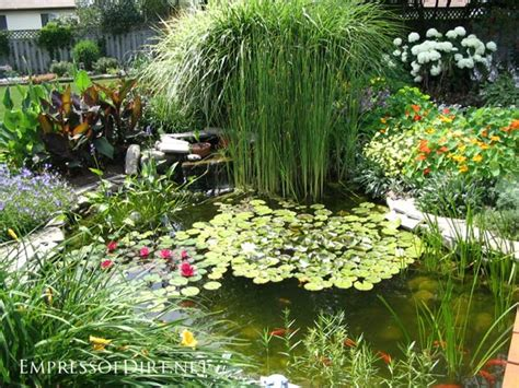 small backyard pond pictures 17 beautiful backyard pond ideas for all budgets