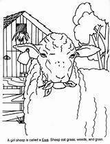 Kolorowanki Owce Sheep Coloring Industry Sheepusa sketch template