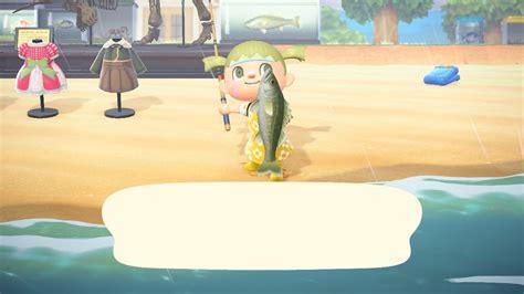 シーラカンス あつ 森魚 影