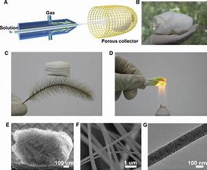 Ultralight  Scalable  And High
