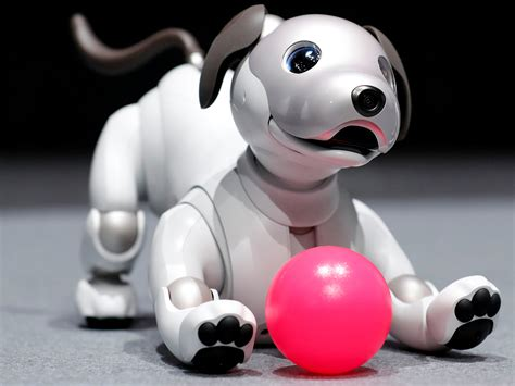 Sony Unleashes New Aibo Robot Dog