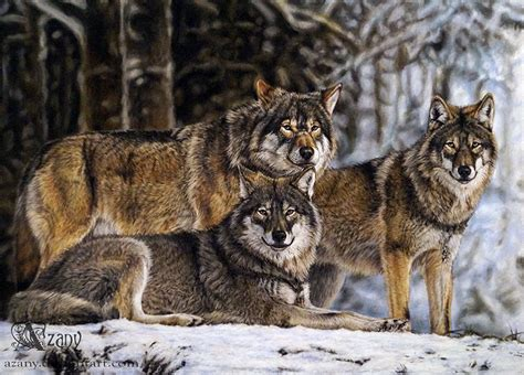 Wolf Pack By Azany On Deviantart