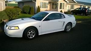 Ford Mustang Questions - 99 Mustang