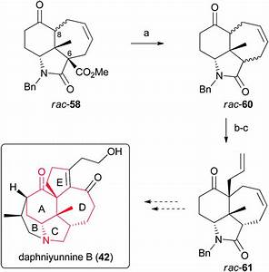 Strategies Towards The Synthesis Of Calyciphylline A