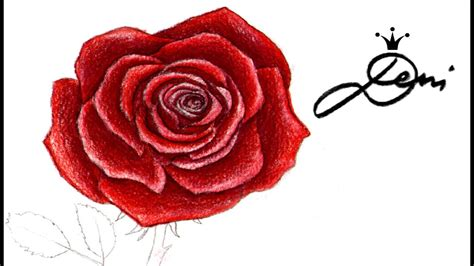 rose farbig zeichnen lernen colorieren    draw
