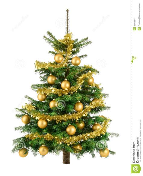 lush christmas tree with gold baubles stock image image