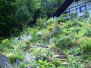 Pflanzen Zur Hangbefestigung : hangbefestigung a z mein sch ner garten forum ~ Frokenaadalensverden.com Haus und Dekorationen