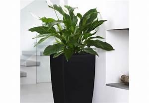 Schöne übertöpfe Für Drinnen : bert pfe f r zimmerpflanzen obi ber t ~ Watch28wear.com Haus und Dekorationen