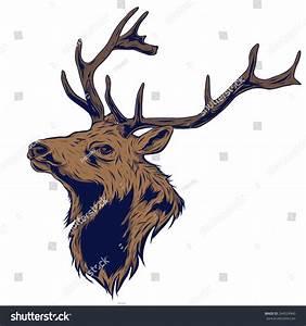 Rain Deer/Reindeer Head Vector Illustration - 244524940 ...