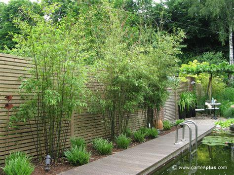 Sichtschutz Garten Pflanze by Der Wohlf 252 Hlfaktor Unbeobachtet Im Eigenen Garten