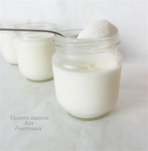 yaourt maison avec yaourti 232 re aux fourneaux