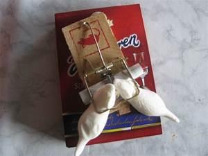 Geld Falten Mäuse Zum Verbraten : wer hat eine idee f r eine nette geldgeschenkverpackung sonstiges plauderecke forum ~ Orissabook.com Haus und Dekorationen