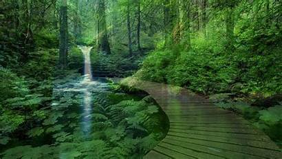 Peaceful Nature Landscape Wallpapers Lake Format