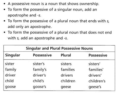 singular and plural possessive nouns worksheets 2nd grade
