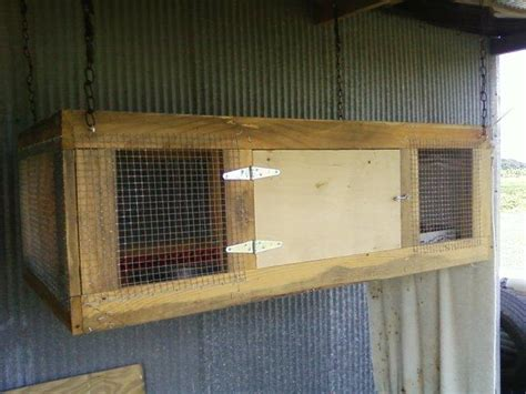 gallery homemade quail cages drawings art gallery