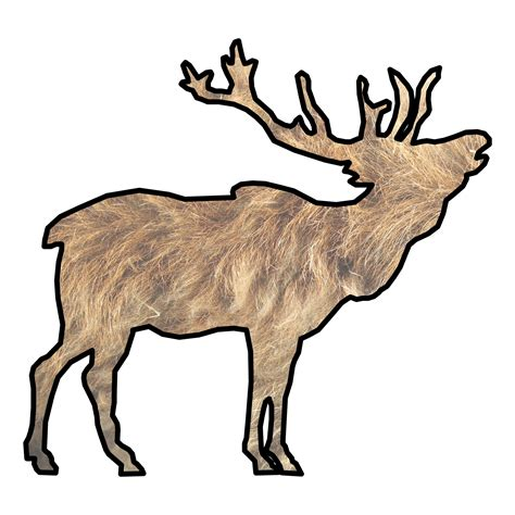 elk drawing  stock photo public domain pictures