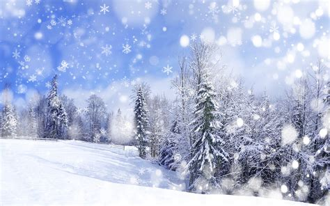 25 winter wallpapers for desktop