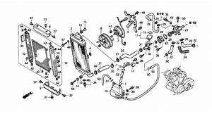 Honda Vtx 1800 Engine Diagram : honda vtx 1800 engine diagram complete wiring diagrams ~ A.2002-acura-tl-radio.info Haus und Dekorationen