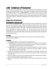 Natural disasters to explore the idea that camouflage is a key aspect i find one that most closely aligns with my goals for a particular class and modify it to guide students through the activity. Evolution_Study_GuideKey - Evolution Study Guide Answer Key 1 What is natural selection the ...