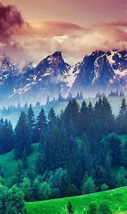 15 Best Nature Wallpapers in 4K and Full HD for Desktop ...