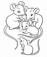 Mouse Coloring Pages Printable Mice Rats Animal Cartoon sketch template