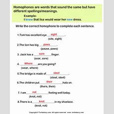 Complete The Sentence With The Correct Homophone Worksheet  Turtle Diary
