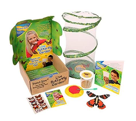 butterfly garden kit grow your own butterflies with this kit crystalandcomp