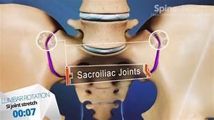 261 Best Hip Issues   Sciatica    Si