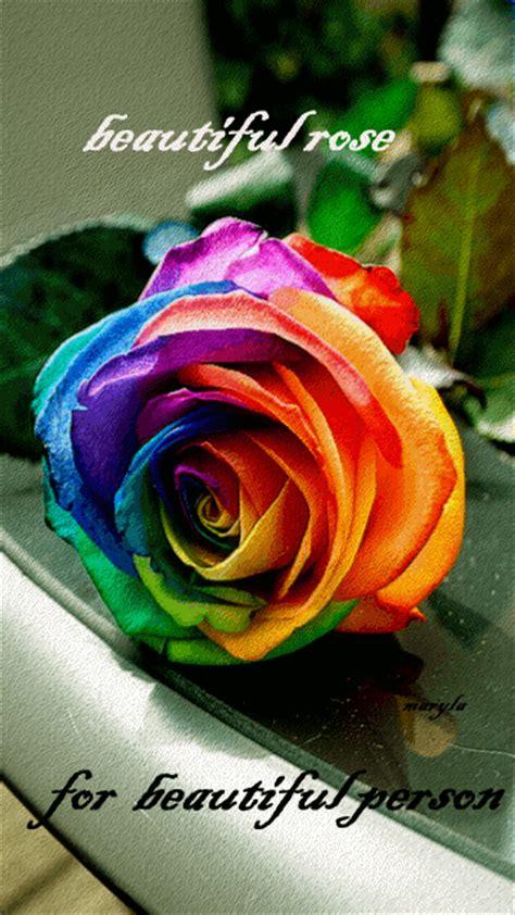 decent image scraps beautiful rose  beautiful person