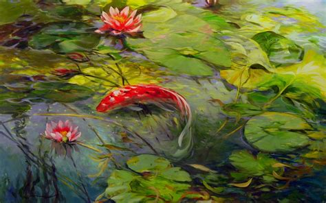 koi wallpapers  background pictures