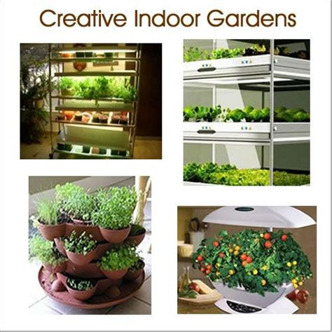 contemporary indoor hydroponic vegetable garden s