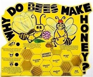 Make A Science Fair Project About Why Bees Make Honey