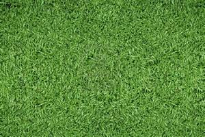 soccer-field-grass-patterngreen-grass-background - Soccer ...