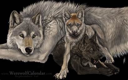 Wolves Wallpapers Wolf Anime Background Fanpop Manga