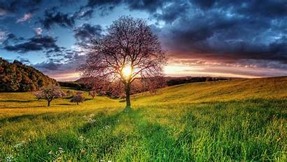Nature Sunset Wallpapers Backgrounds Psd