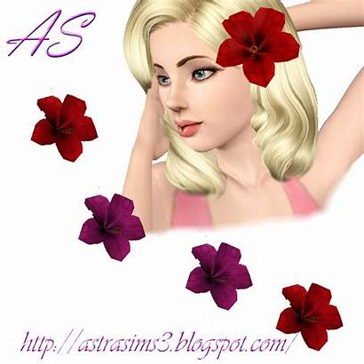 Sims Flower Accessory Hibiscus Astrasims3 Flowers Updates