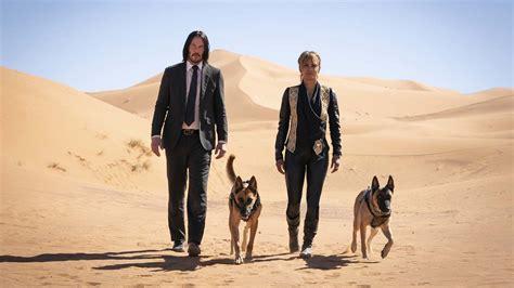 Halle Berry John Wick 3 Dogs