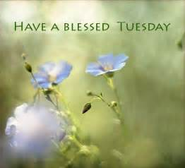 a blessed tuesday quotes quotesgram