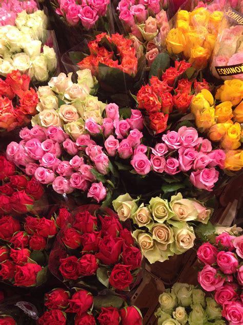 bloemen in goes de bloemenveiling de bloemist