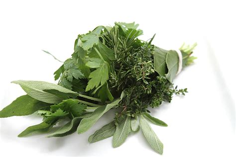 cuisine bouquet garni how to store fresh herbs food style