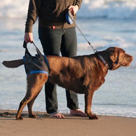 walkabout gehhilfe fuer hunde hinten hintere gliedmassen