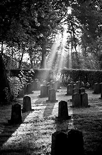 carol goodreads addict jones als review     shadows