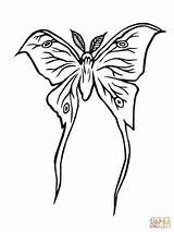 Moth Luna Coloring Pages Silkworm Drawing Lune Printable Drawings Clipart Drawn Version Supercoloring Getdrawings Designlooter 480px 63kb sketch template